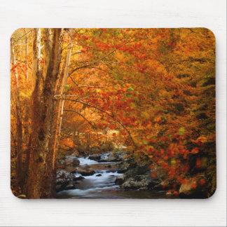 USA, Tennessee. Rushing Mountain Creek 2 Mouse Pad