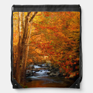 USA, Tennessee. Rushing Mountain Creek 2 Drawstring Bags