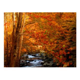 USA, Tennessee. Rushing Mountain Creek 2 Post Card