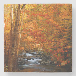 USA, Tennessee. Rushing Mountain Creek 2 Stone Coaster