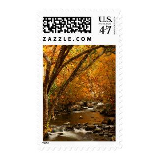 USA, Tennessee. Rushing Mountain Creek 3 Postage Stamp