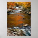 USA, Tennessee. Rushing Mountain Creek 4 Poster