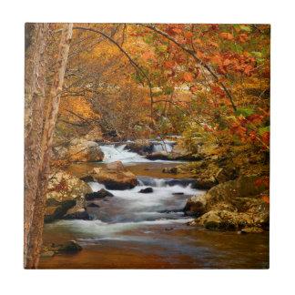 USA, Tennessee. Rushing Mountain Creek Ceramic Tile