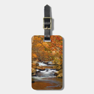 USA, Tennessee. Rushing Mountain Creek Luggage Tag