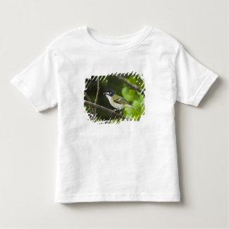 USA, Texas, Balcones Canyonlands NWR. Young Toddler T-shirt