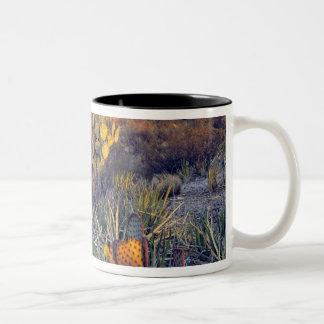 USA, Texas, Big Bend NP. A sandy pink dusk Two-Tone Coffee Mug
