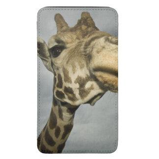 USA, Texas, Fossil Rim Wildlife Area, giraffe Galaxy S5 Pouch