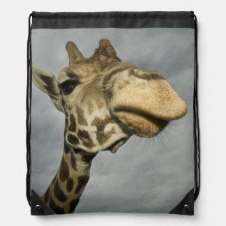 USA, Texas, Fossil Rim Wildlife Area, giraffe Drawstring Bag