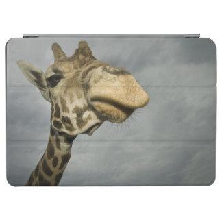 USA, Texas, Fossil Rim Wildlife Area, giraffe iPad Air Cover