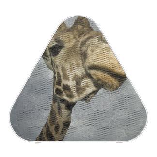 USA, Texas, Fossil Rim Wildlife Area, giraffe Bluetooth Speaker