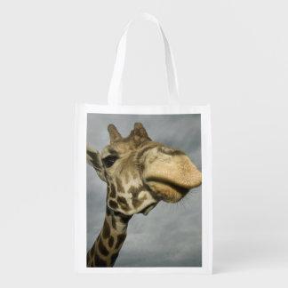 USA, Texas, Fossil Rim Wildlife Area, giraffe Reusable Grocery Bags