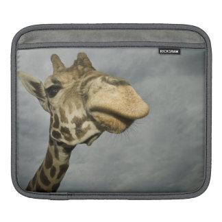 USA, Texas, Fossil Rim Wildlife Area, giraffe Sleeve For iPads
