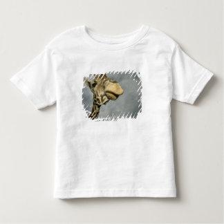 USA, Texas, Fossil Rim Wildlife Area, giraffe Toddler T-shirt