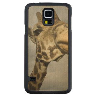 USA, Texas, Fossil Rim Wildlife Area, giraffe Carved® Maple Galaxy S5 Case