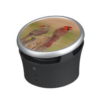 USA, Texas, Hidalgo County. Cardinal Pair Bluetooth Speaker