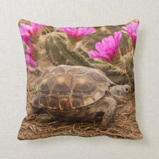 USA, Texas, Hidalgo County. Tortoise Throw Pillow