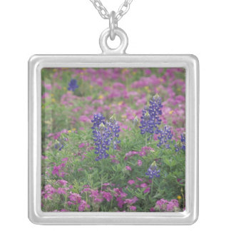 USA, Texas Hill Country. Bluebonnets among phlox Silver Plated Necklace