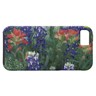 USA, Texas Hill Country. Bluebonnets and iPhone 5 Cases