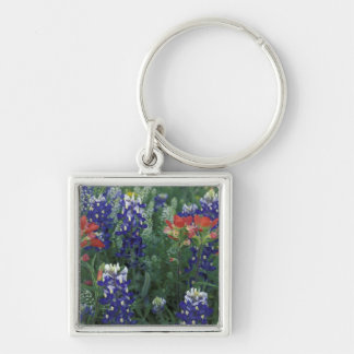 USA, Texas Hill Country. Bluebonnets and Silver-Colored Square Keychain