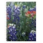 USA, Texas Hill Country. Bluebonnets and Spiral Note Books
