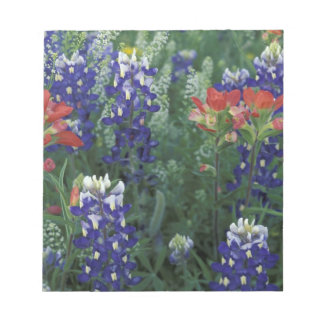 USA, Texas Hill Country. Bluebonnets and Memo Note Pad