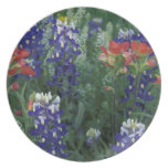 USA, Texas Hill Country. Bluebonnets and Party Plate