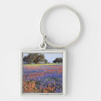 USA, Texas, Llano. Bluebonnets and redbonnets Silver-Colored Square Keychain
