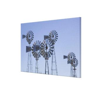 USA, TEXAS, Lubbock: American Wind Power Center Canvas Prints