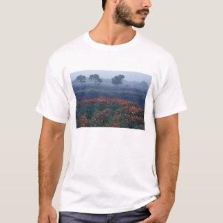 USA, Texas, near Lytle Fog, oaks, blue bonnets T-Shirt