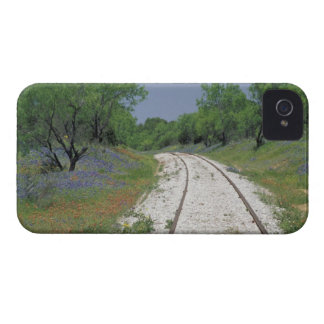 USA, Texas, near Marble Falls, Blue bonnets and iPhone 4 Cover