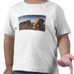 USA, TEXAS, Panhandle Area, Amarillo: Cadillac 2 Tee Shirts