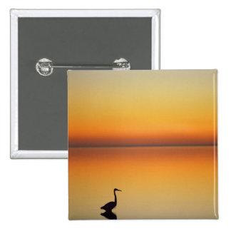 USA, Texas, Port Aransas, Great Blue Heron at Pinback Button