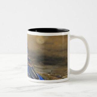 USA, Texas, Rio Grande Valley, McAllen. 4 Two-Tone Coffee Mug