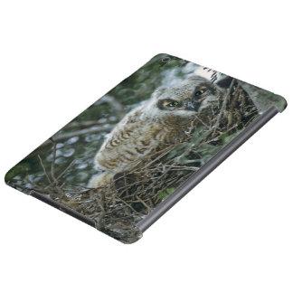 USA, Texas, Rio Grande Valley, McAllen. Close-up Case For iPad Air