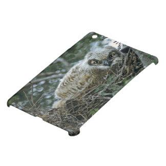 USA, Texas, Rio Grande Valley, McAllen. Close-up iPad Mini Case