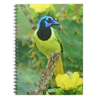 USA, Texas, Rio Grande Valley, McAllen. Green Spiral Notebook