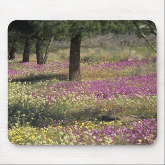 USA, Texas, Sand Verbena and Brown-eyed Mouse Pad