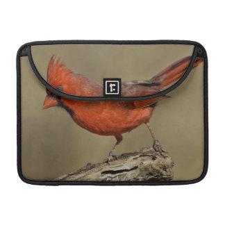 USA, Texas, Santa Clara Ranch. Northern Cardinal Sleeve For MacBook Pro