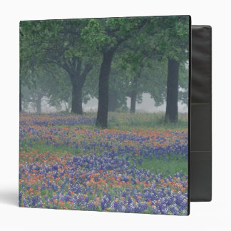 USA, Texas, Texas Hill Country Expansive field Binder
