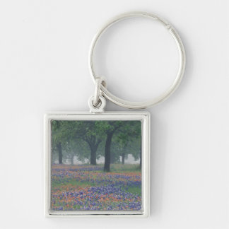 USA, Texas, Texas Hill Country Expansive field Key Chain