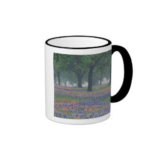 USA, Texas, Texas Hill Country Expansive field Mugs
