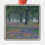 USA, Texas, Texas Hill Country Expansive field Christmas Ornaments
