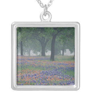 USA, Texas, Texas Hill Country Expansive field Silver Plated Necklace
