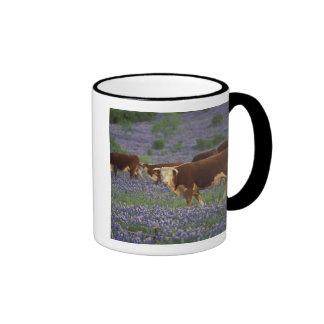 USA, Texas, Texas Hill Country, Hereford Mugs