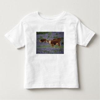 USA, Texas, Texas Hill Country, Hereford Shirt