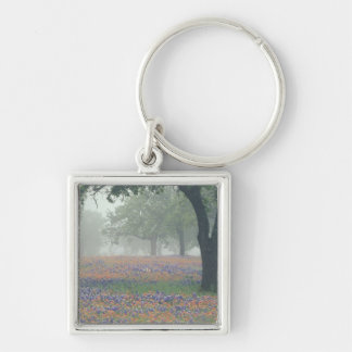 USA, Texas. Texas paintbrush and bluebonnets Silver-Colored Square Keychain
