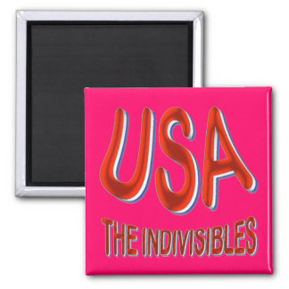 USA THE INDIVISIBLES Red White Blue 2 Inch Square Magnet