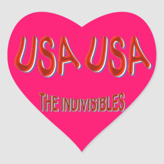 USA THE INDIVISIBLES Red White Blue Heart Sticker