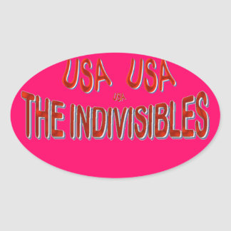 USA THE INDIVISIBLES Red White Blue Oval Sticker