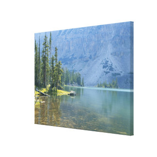 USA, Utah, Ashley National Forest, High Uintas Canvas Print